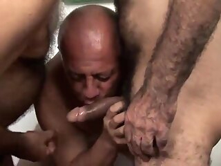 gay blowjob gay daddy gay group sex